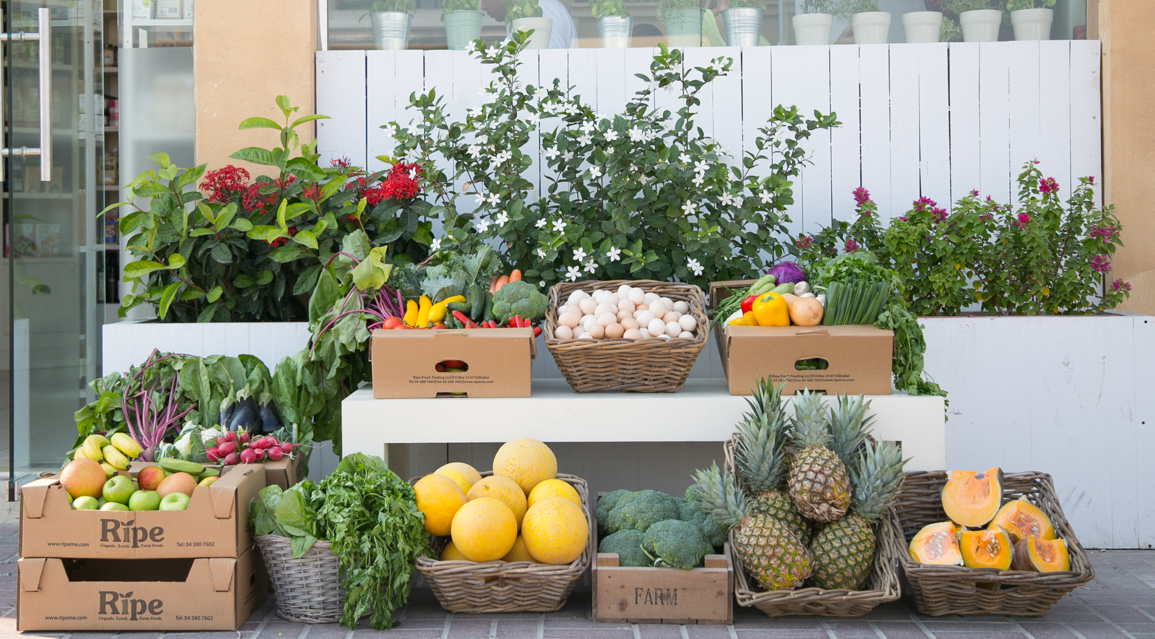 How to start your own organic store in Dubai